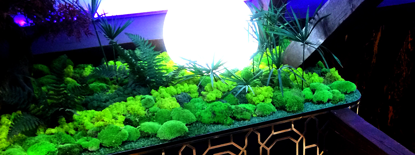preserved moss display styling details. Interior design and styling details by Moji Salehi at Moji Interiors in Hove.